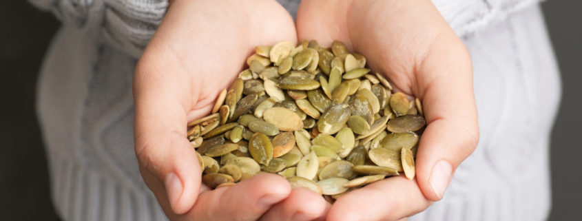 Pumpkin Seed Nutrition